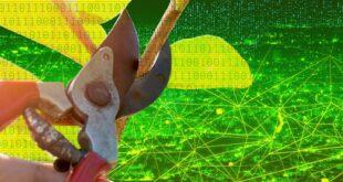 Ehlileşen Makinelere Bitkisel Çözüm: Yapay Zekanın Güçlenmesi İçin Budama Yöntemi